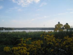 Nein, nicht der Amazonas. Die gute, alte Havel. Foto: JoBo, 8-2015.