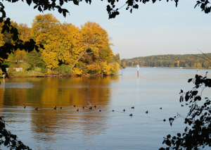 Wannsee_14