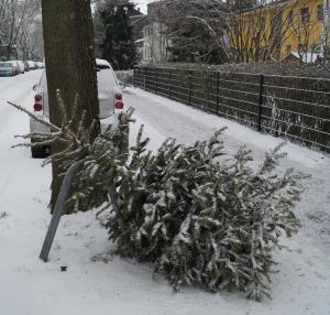 schnee-auf-christbaum